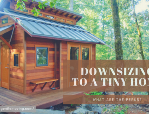 Downsizing to a Tiny Home: What are the perks?