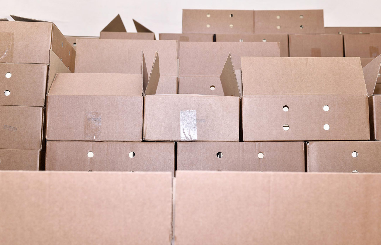 Packing Services Moving Storage Boxes Access Gentle Moving